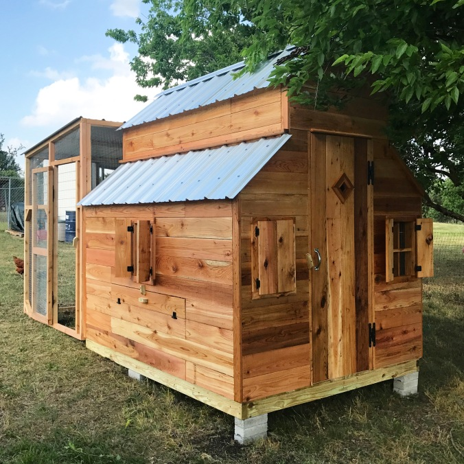 chicken coop texas cedar shop plans henhouse